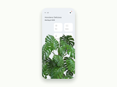 Strelitzia green product ecommerce motion plants plant 3d illustration iphone x invision studio invision interaction daily ui app flat animation mockup