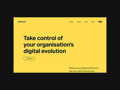 Sonar (Brilliant Noise) brilliant noise typography minimal desktop design website