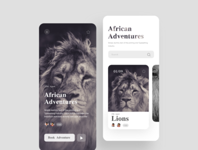 African Adventures app ux interaction app design uidesign interaction design minimal interface ui design