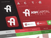 BRAND GUIDELINES FOR ASH CAPITAL TRADE