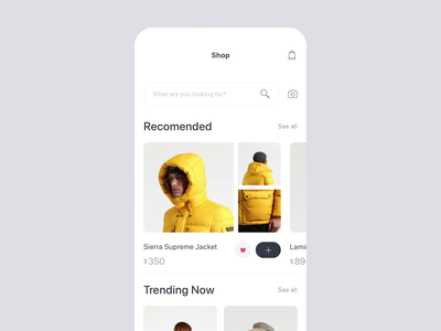Fashion Store App Interaction