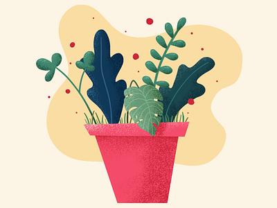 Plants / Illustration flower design app nature design photoshop plants