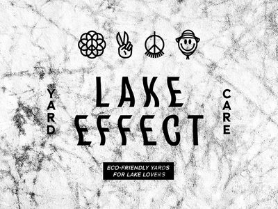 Brand exploration for Lake Effect Lawn Care