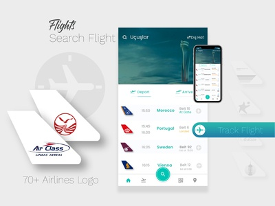 Airline Flight Screen UI Design