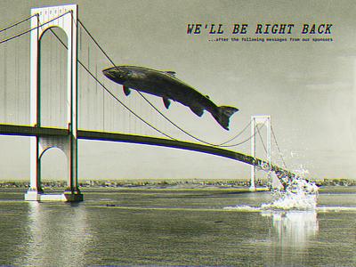 Salmon Migration vintage photoshop bridge salmon