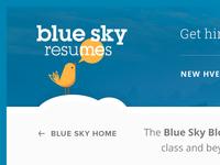 Blue Sky Resumes Blog Updates