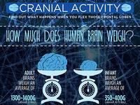 Cranial Activity