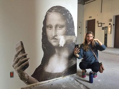Mona Lisa Environmental Graphic