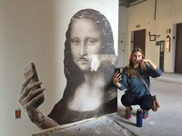 Mona Lisa Environmental Graphic