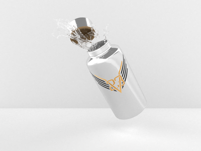 23 Valkyries Water Bottle 3d render dimension reusable metal bottle water logo band valkyries valkyrie 23