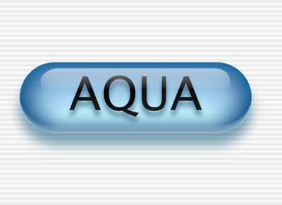 Mac OS X Aqua Button