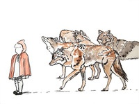the big bad pack of coyotes