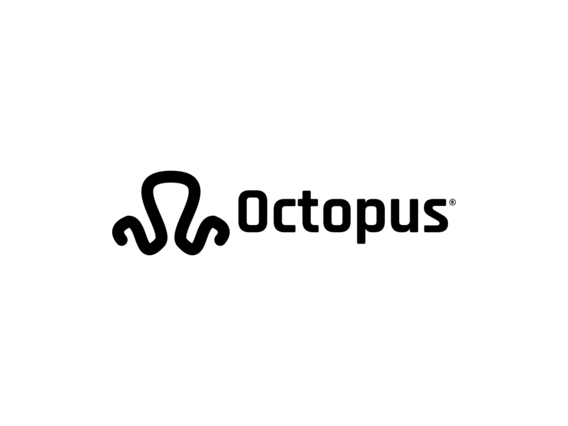Octopus corporate developer simple logo minimal logo design typography branding identity icon it octopus design logo