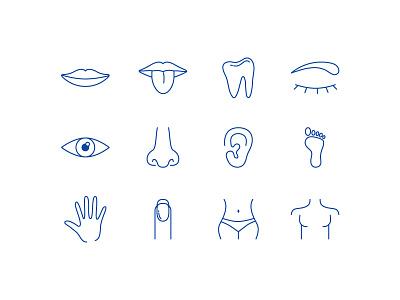 Icon - Body set body illustration icon