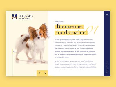 Web Design - Le Domaine de Montdenis