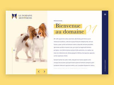 Web Design - Le Domaine de Montdenis branding work pet institutional site design homepage dog ux  ui webdesign website