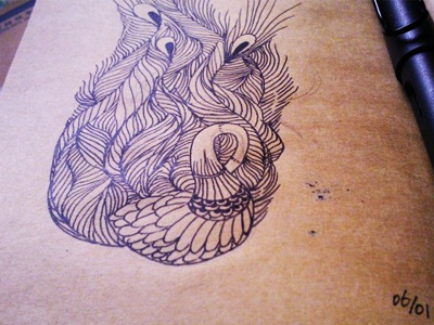 Peacock peacock china handdrawing illustration