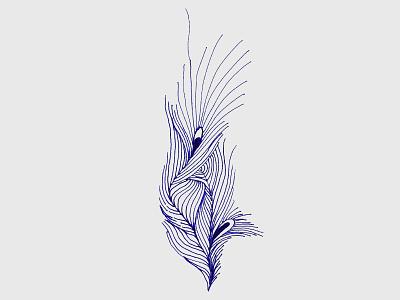 peacock peacock hand-drawing illustration china beijing