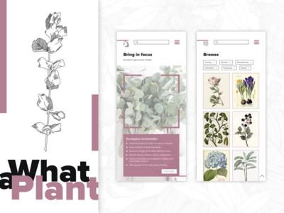 What a Plant app