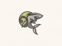 Shark Snails