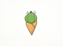 Cone Cactus
