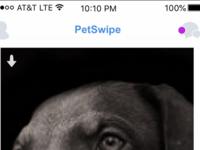Petswipe