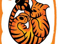 Tiger Drinking Beer