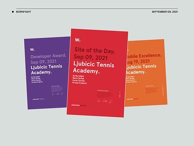 Awwwards—Ljubicic Tennis Academy website layout art direction design animation ui