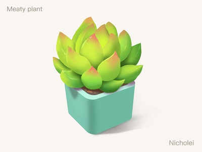 Meaty plant realistic illustrations
