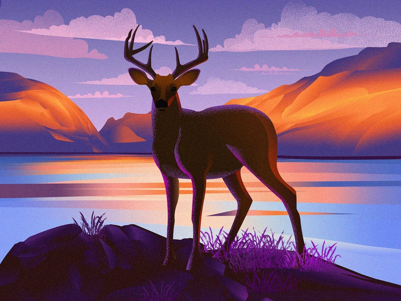 Epi 3 epicurrence nature deer mountains illustration