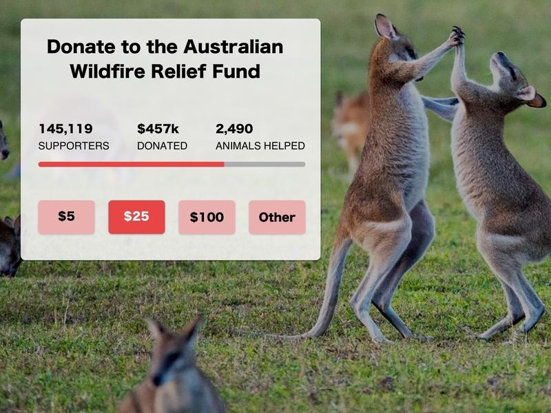 Daily UI | 032 - Crowdfunding Campaign crowdfunding campaign daily ui challenge daily ui 032