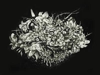 Ink illustration_Blooming