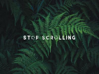 stop scrolling