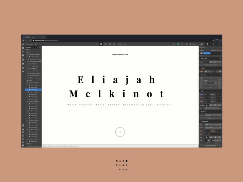 Webflow Development development graphic design flat website user interface minimalistic ui ux digital minimal webflow