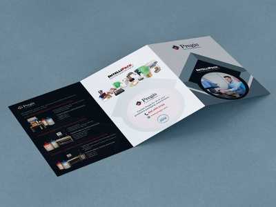 Pregis Brochure Design nisha f1 nisha droch nisha design catalog brochure mockup brochure layout brochure design brochure advertisement