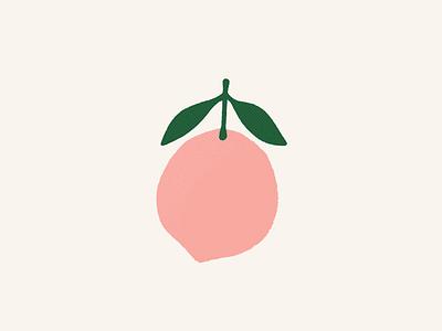 PEACH digital illustration fruit peach