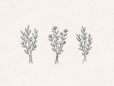 wildflowers flower illustration flowers line art