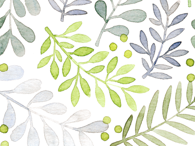 fresh pattern flower plant floral watercolor illustration