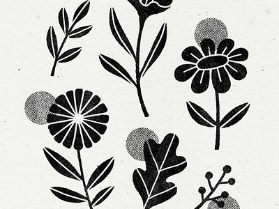 exploring linocuts - part 2 plant illustration linocut