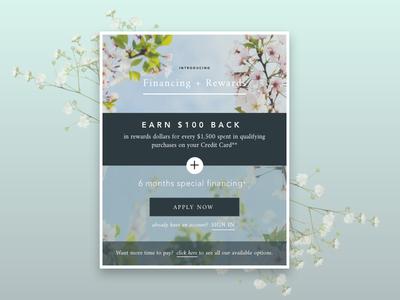 Financing email promotion promo digital design digital ad email campaign email banner financing promotion email