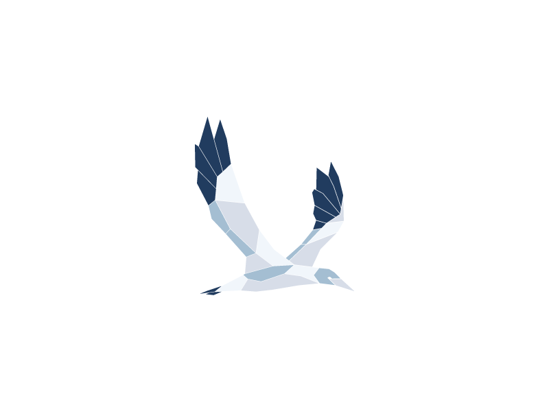havsule seabird flying spread wing low poly