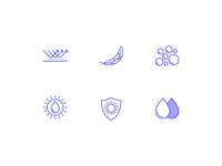 Solavé Icons