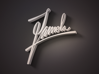 Pamela pamela dallas typography handwriting cgi 3d modo render