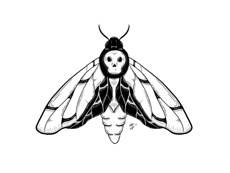 💀🦋 nyc black and white death tattoo black work illustration illustration line work death head moth death moth