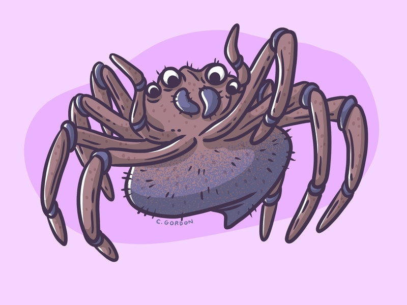 #SMAUGUST Art Challenge 18 | Shelob shelob giant spider spider draw daily smaugust lotr lord of the rings art challenge procreate digital illustration illustration