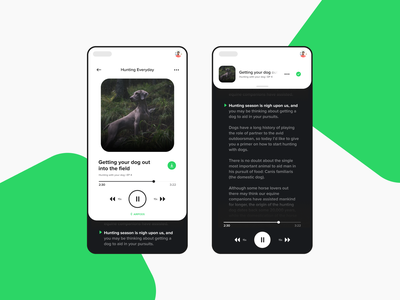 Podcast Redesign podcasts user experience user interface dribbble branding concept design ux ui button pause players controls player video podcast