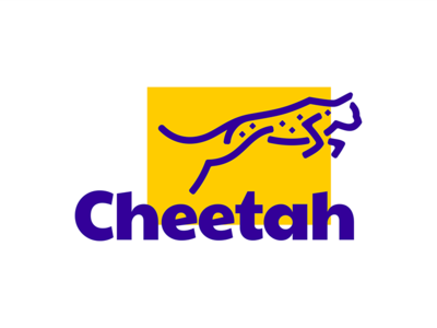 Cheetah africa running gepard cheetah