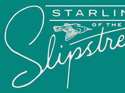 Slipstream type art bird lettering typography illustration design seth mcwhorter