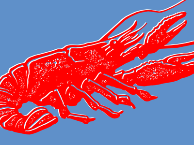 Electricrawfish design mcwhorter seth graphic animal  pet sketch drawing illustration louisiana crawfish animal