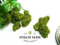 Strain Farm